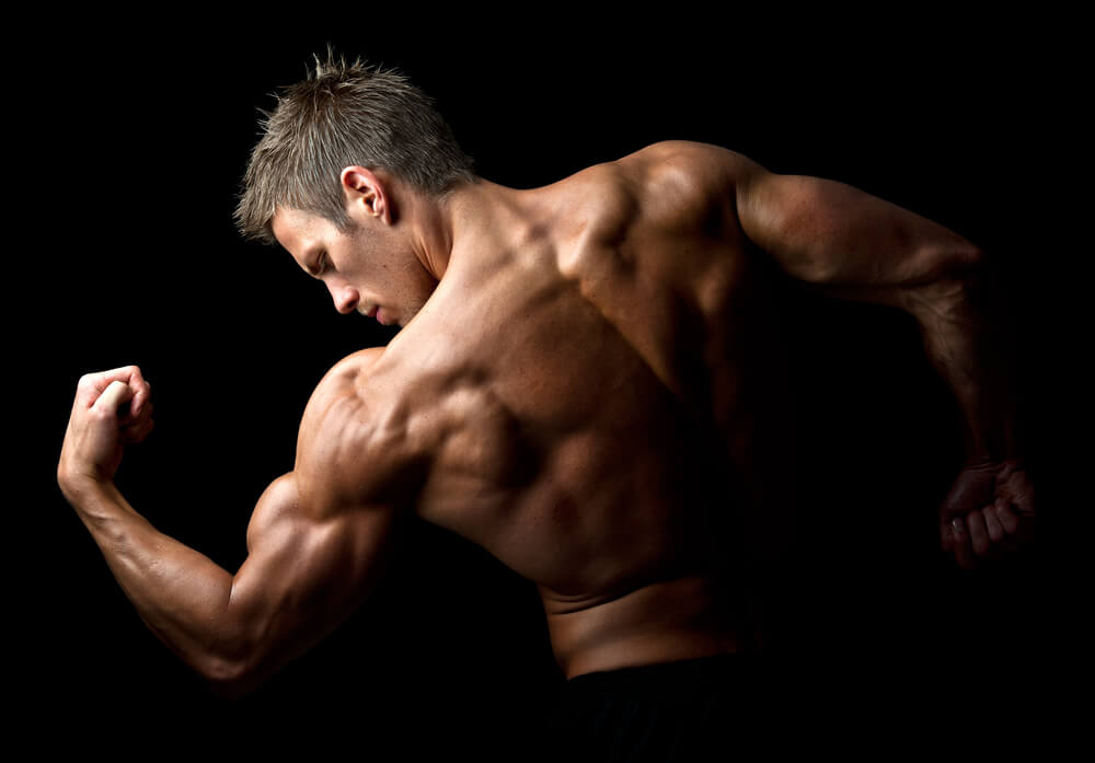 Muscle Gain Meals